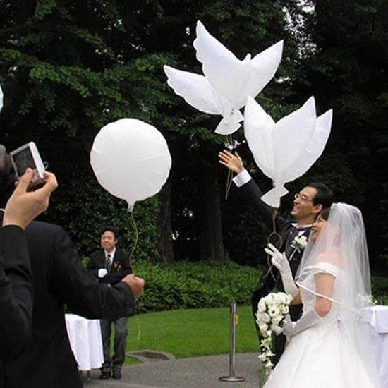10 x bioballon duif 50x95cm excl.Heliumtank