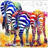 Diamond Painting Volwassenen - Diamond Painting Kinderen - Gekleurde Zebra - 30x30 cm
