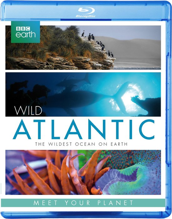 BBC Earth - Wild Atlantic (Blu-ray)