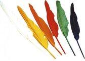 Indianen veren gekleurd
