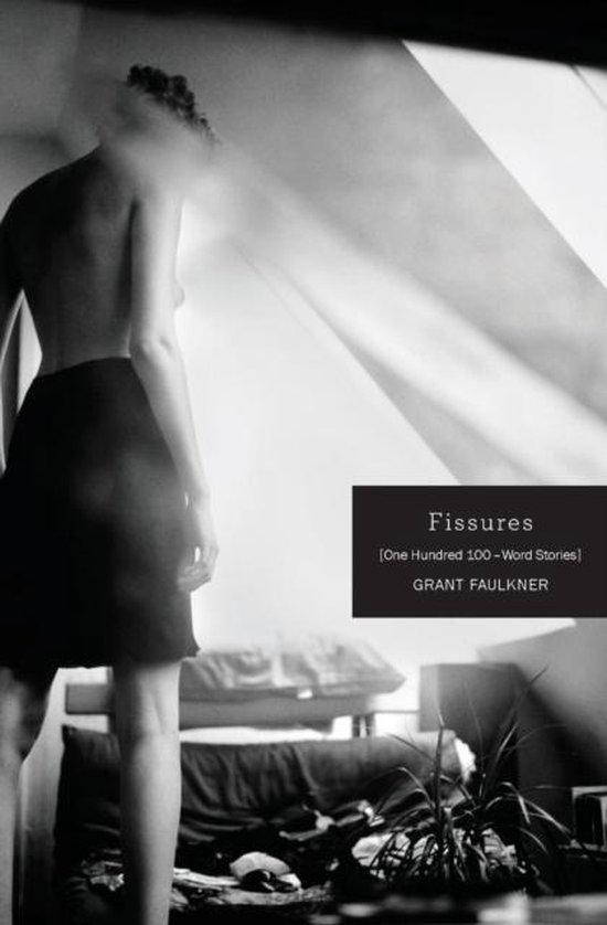 Boek cover Fissures van Grant Faulkner (Paperback)