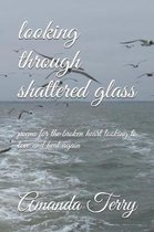 Looking Through Shattered Glass