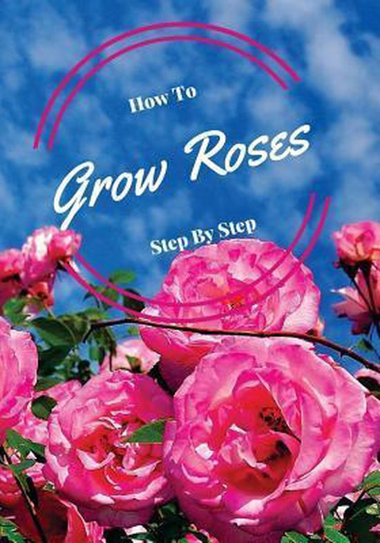 How to Grow Roses Step by Step