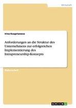 Anforderungen an die Struktur des Unternehmens zur erfolgreichen Implementierung des Intrapreneurship-Konzepts