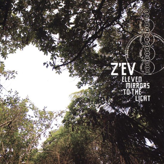 Eleven Mirrors To The Light