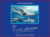 Pico's droom
