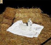 Alpaca dekbed zomer 2.40 x 2.00