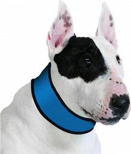 Halsband voor hond aqua coolkeeper pacific blue 27-34x4 cm