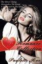 Paulette Rae's Romance Collection