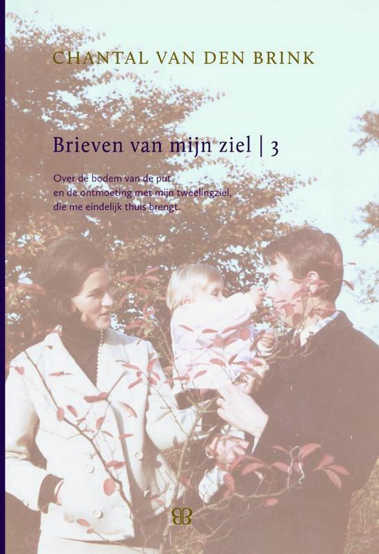 Brieven van mijn ziel 3 - Chantal van den Brink | Fthsonline.com