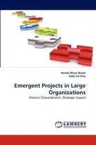 Emergent Projects in Large Organizations