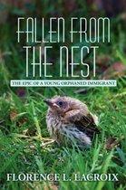 Fallen from the Nest