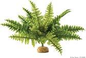 Exo Terra Terrarium decoratie Rainforest Plant Boston Fern - 30cm