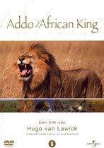 H. Van Lawick: Addo African King (D)