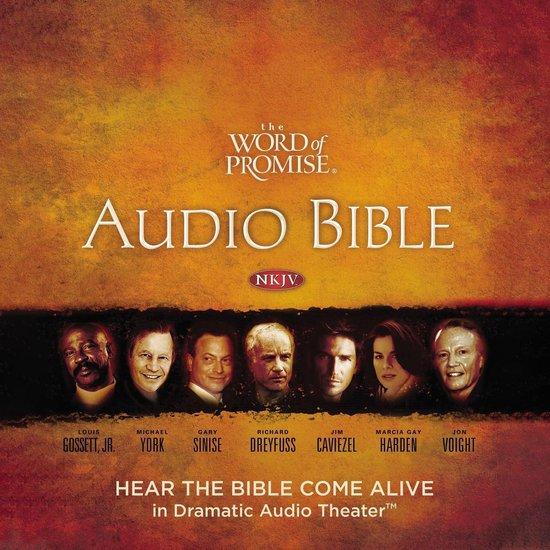 Boek cover The Word of Promise Audio Bible - New King James Version, NKJV: (12) 1 Chronicles van Thomas Nelson (Onbekend)