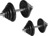 Dumbellset RS Sports 2 x 20 KG