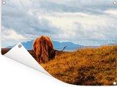 Een Schotse hooglander loopt over de bergen Tuinposter 80x60 cm - Tuindoek / Buitencanvas / Schilderijen voor buiten (tuin decoratie)