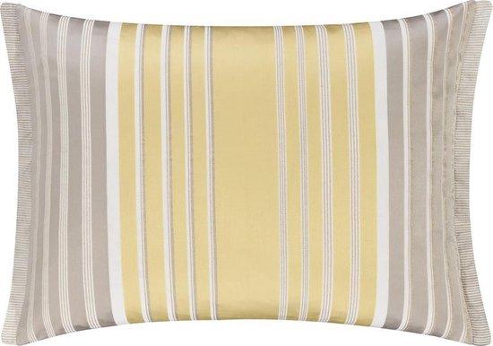 Designers Guild Piovene Dove - Sierkussen - 45x60 cm - Goud/Zilver