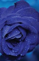 The Hacker-Proof Internet Address Password Book - Blue Rose