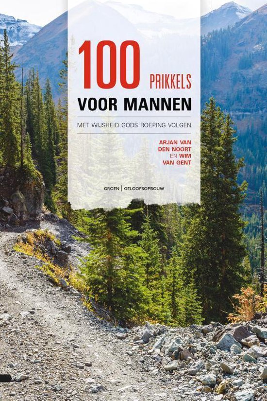 Boek cover 100 prikkels voor mannen van Arjan van den Noort (Paperback)