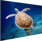 Zeeschildpad  Aluminium 90x60 cm - Foto print op Aluminium (metaal wanddecoratie)