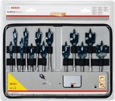 BOSCH PROFESSIONAL 13-delige speedborenset Self Cut Speed In Roltas