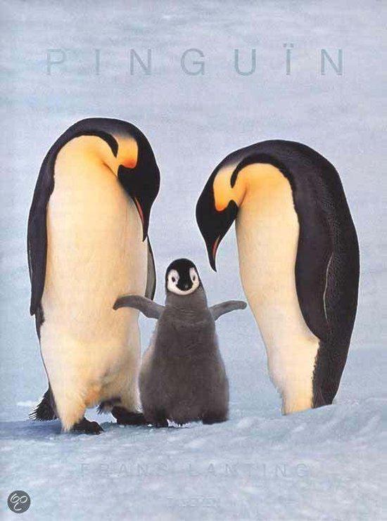 Pinguin - Frans Lanting |