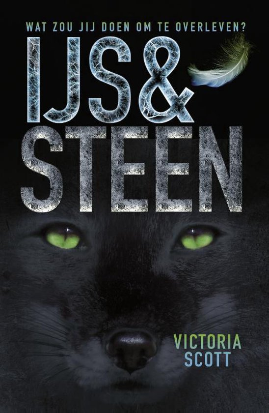 IJs en steen - Victoria Scott |