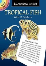 Learning about Tropical Fish