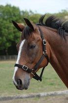 Weatherbeeta Paarden halster & touw set zwart maat full