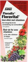 Salus Floradix Floravital – Bij vermoeidheid – Vegan vloeibaar ijzer-elixir met groente-extracten en vruchtenconcentraten – 250 ml