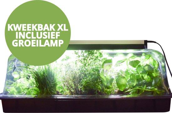 XL Kweekbak met Deksel en LED Groeilamp – Kweekkas met Kweeklamp