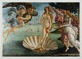 Poster in Witte Lijst - De Geboorte van Venus - Sandro Botticelli - Large 50x70 - Renaissance Kunst