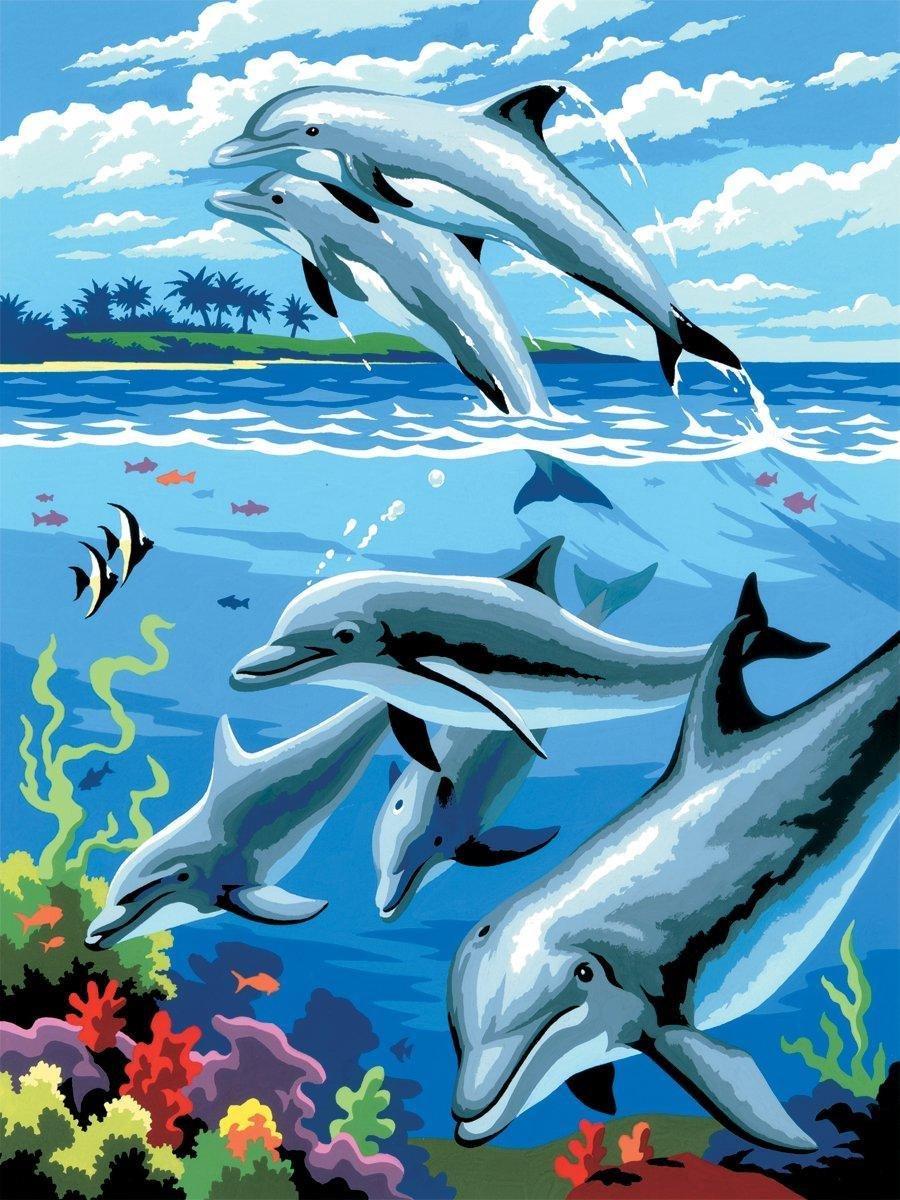 Schilderen op nummer - Paint by numbers - Dieren - Dolfijnen 22x30cm - Schilderen op nummer volwassenen - Paint by numbers volwassenen