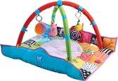 TafToys Newborn Gym - Speelkleed met afneembare bogen en speeltjes
