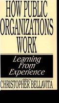 How Public Organizations Work