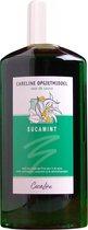 Opgietmiddel Sauna - Eucamint (merk; Careline) 500 ml