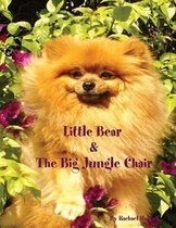 Little Bear and the Big Jungle Chair