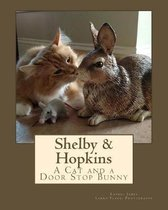 Shelby & Hopkins