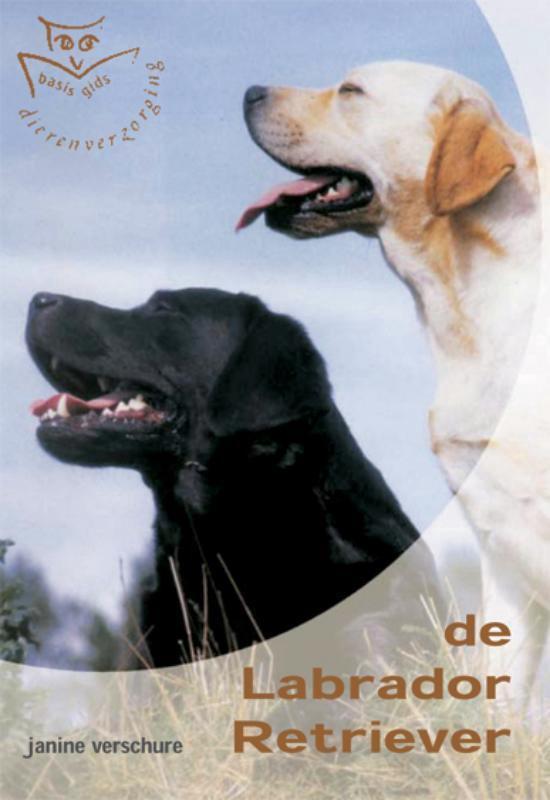 Labrador Retriever - Diana van Houten  