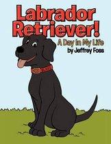 Labrador Retriever!