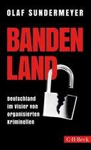Boek cover Bandenland van Olaf Sundermeyer