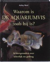 Waarom is de aquariumvis zoals hij is
