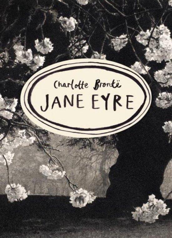 Boek cover Jane Eyre (Vintage Classics Bronte Series) van Charlotte Bronte (Paperback)