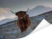 Een Schotse hooglander op het eiland Skye Poster 40x30 cm - klein - Foto print op Poster (wanddecoratie woonkamer / slaapkamer) / Wilde dieren Poster