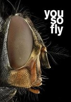 you so fly