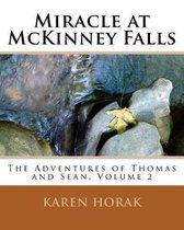 Miracle at McKinney Falls