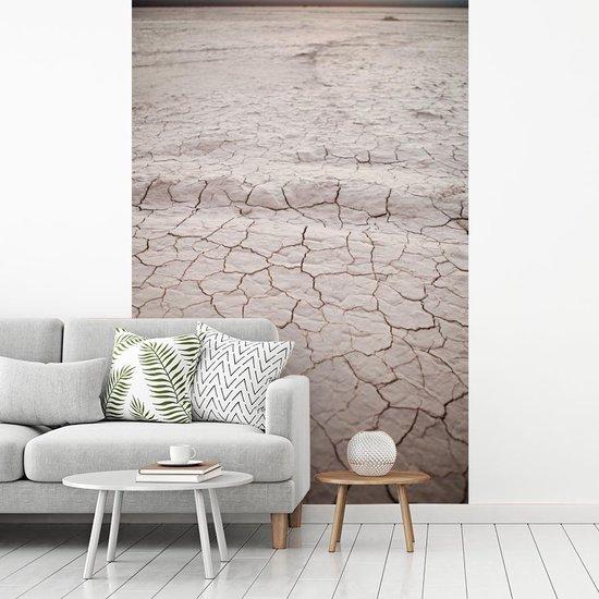 Het schitterende patroon van een zoutvlakte in het Nationaal park El Leoncito fotobehang vinyl breedte 180 cm x hoogte 270 cm - Foto print op behang (in 7 formaten beschikbaar)