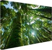 Tropische jungle in Azie Canvas 30x20 cm - klein - Foto print op Canvas schilderij (Wanddecoratie woonkamer / slaapkamer)