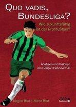 Quo vadis, Bundesliga?. Wie zukunftsf hig ist der Profifu ball? - Analysen und Visionen am Beispiel Hannover 96